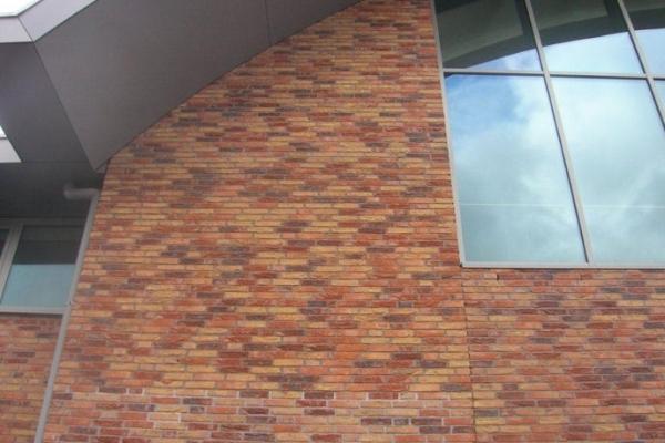 Cegły Nelissen - Premium